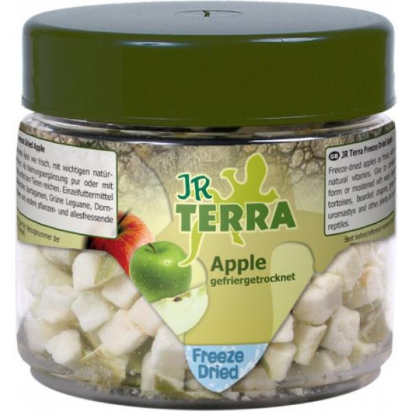 JR Farm Terra Freeze Dried Apfel 15g